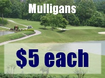 Mulligans View of Course